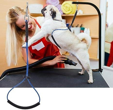 Peluquería para Perros Cuerda de sujeción Peluquería para Mascotas ...