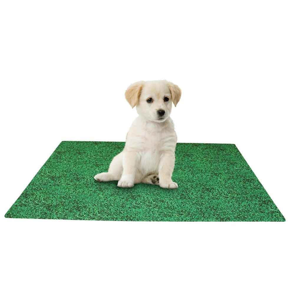 Collections Etc Leak Resistant Washable Puppy Potty Training Pad, Green, 20 X 28