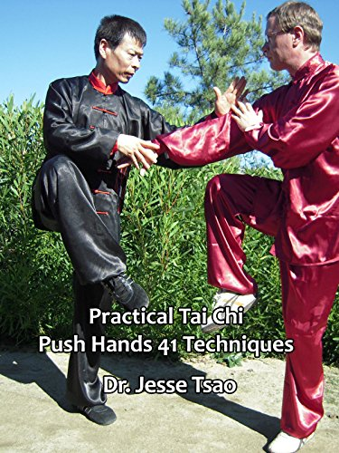 Practical Tai Chi Push Hands 41 Techniques by