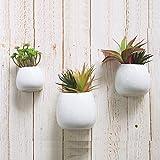 3 PCS Wall Mounted Ceramic Flower Plant Vase, Hanging Planters,Modern Ceramic Hanging Planters, Succulent Plant Pots, White