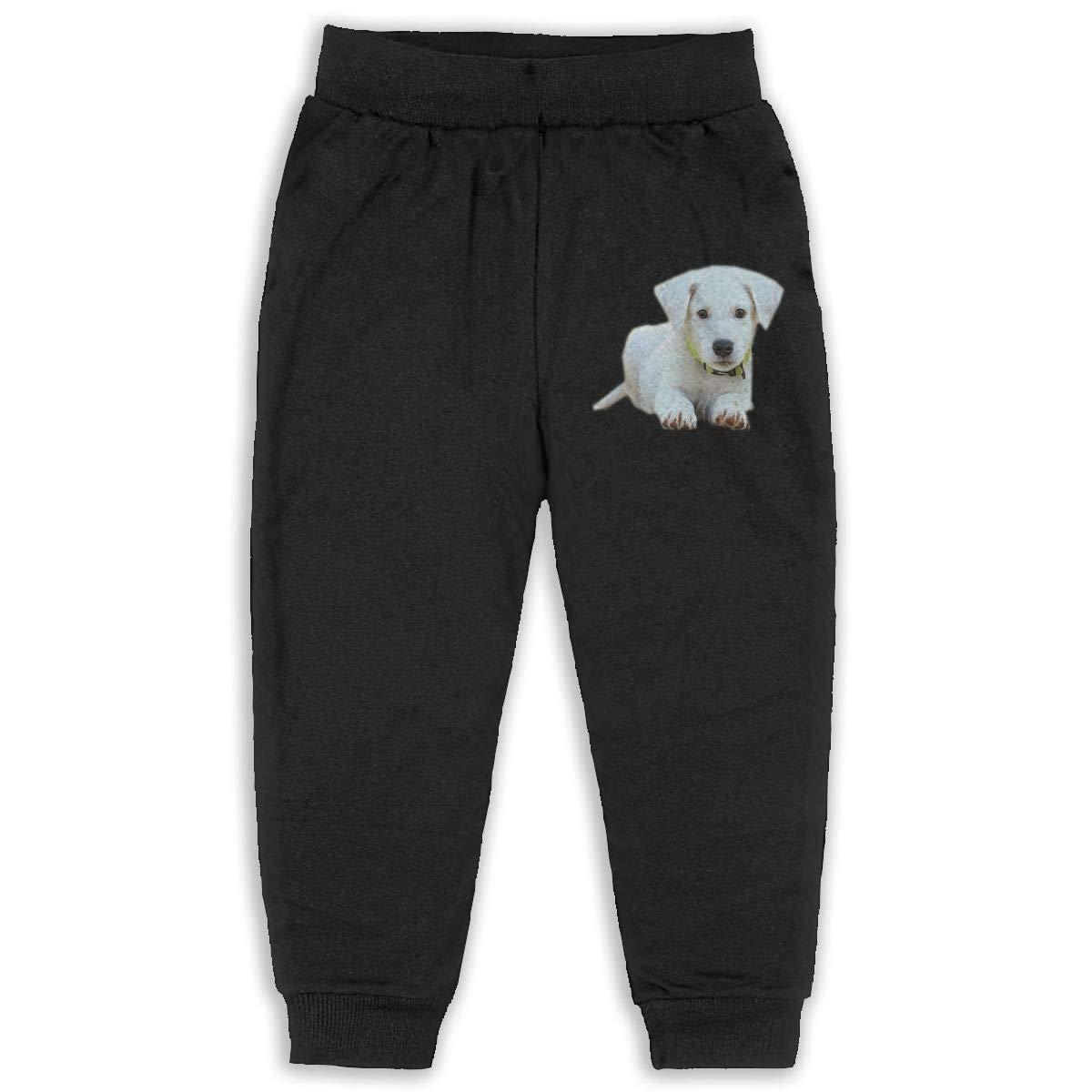 Uyikuvt Sweatpants Puppy Dog Pattern Cotton Toddler Active Jogger Full-Length Regular Size Pants Kids