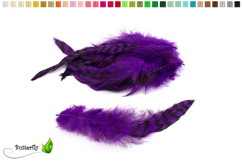 10piume di gallo Chinchilla 15–20cm/piume di uccello gioielli piume bastel piume maschera piume decorative piume rubinetto 548H verde chiaro Creativery