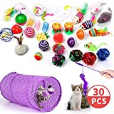 30PCS Cat Toys Interactive Kitten Toys Catnip Toy Kitten Feather Wand Cat Tunnel Stuff Cats Teaser Toy and Springs Cat Kitty Toys Supplies