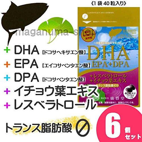DHA+EPA+DPA+レスベラトロール+イチョウ葉エキス 6個セット B01FHDUFMM