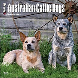 Australian Cattle Dogs 2018 Calendar Amazon Co Uk Browntrout