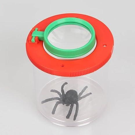 Miaozaigou Caja de Insecto de Doble Lupa Insecto Caja de Insectos ...