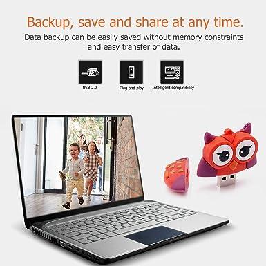 Amazon.com: Pendrive - Memoria USB 2.0 de PVC, modelo de ...