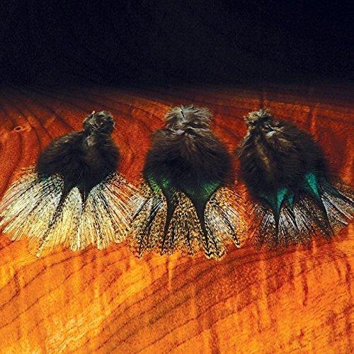 Hareline Coq de Leon Feathers Black Speckled (Corzuno)