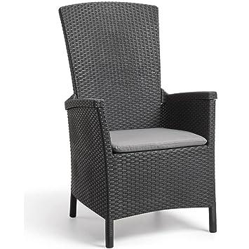 Luckyfu Este Silla de jardín reclinable de Vermont Grafito 238452.diseño Moderno y Elegante,