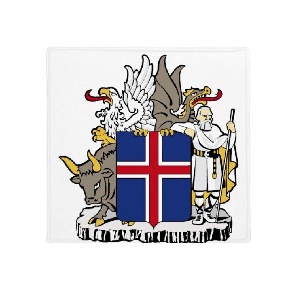 DIYthinker Iceland Europe National Emblem Anti-Slip Floor Pet Mat Square Home Kitchen Door 80Cm Gift