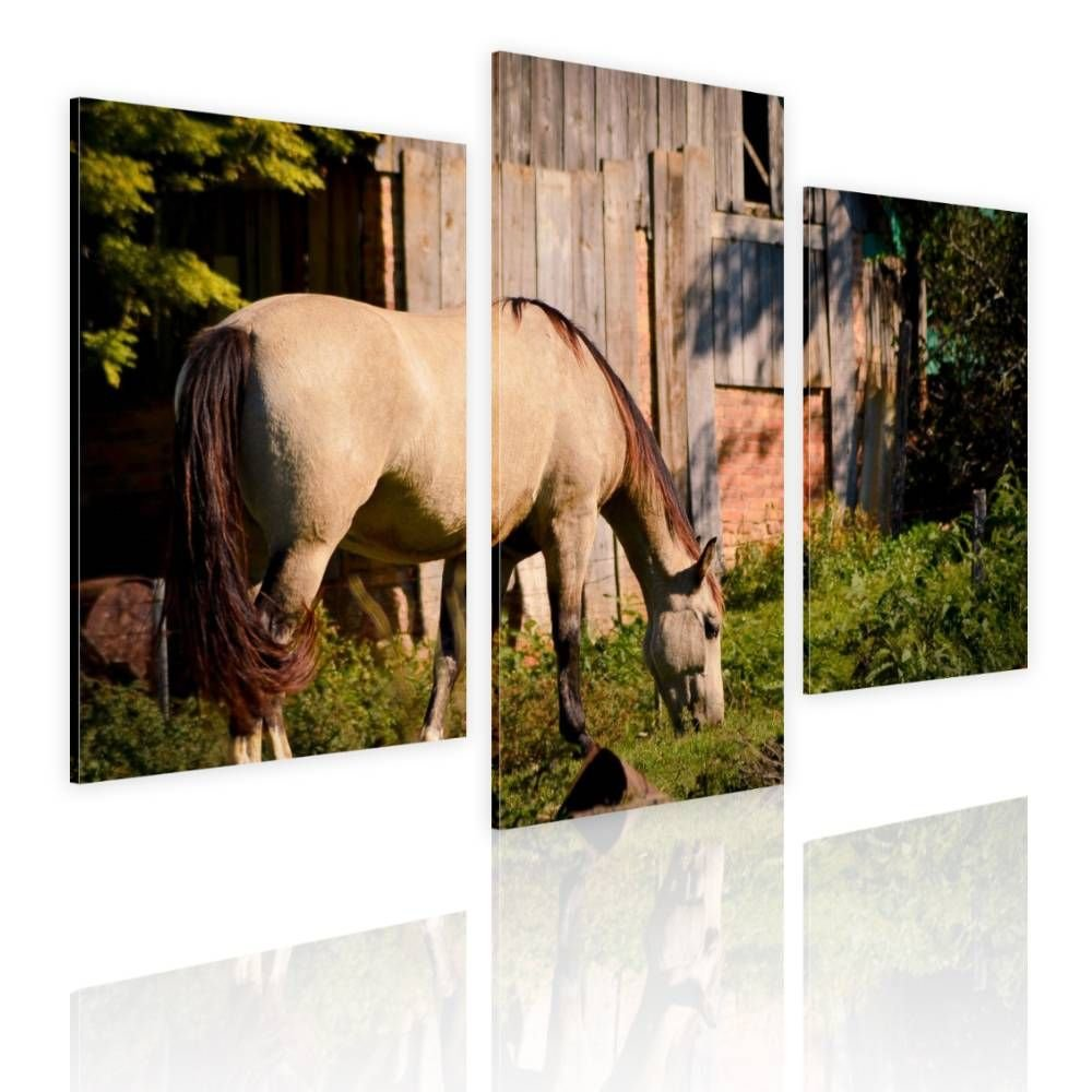 Alonline Art - Horse Grazing Farm Split 3 Panels Framed Stretched Canvas (100% Cotton) Gallery Wrapped - Ready to Hang | 39''x26'' - 99x66cm | 3 Panels Multi Framed Artwork for Living Room for Bedroom