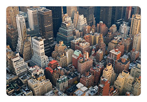 Avenue Street Scene - Lunarable NYC Pet Mat for Food and Water, Manhattan Skyline Aerial View with Street and Skyscrapers Avenue High Buildings Scene, Rectangle Non-Slip Rubber Mat for Dogs and Cats, Multicolor
