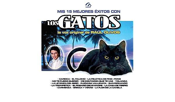 Mis 15 Mejores Éxitos Con los Gatos by Los Gatos Y Raúl Olivos on Amazon Music - Amazon.com