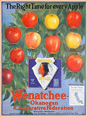MAGNET Wenatchee-Okanogan Apple Fruit Label Washington US Travel Advertisement Magnet
