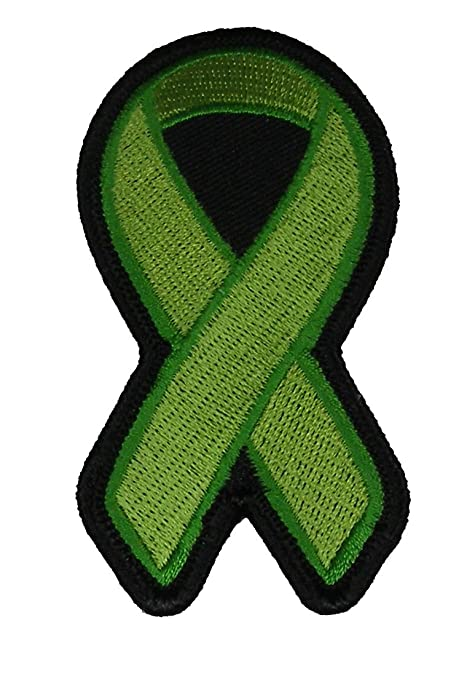 GREEN RIBBON FOR LYME DISEASE KIDNEY CANCER CARCINOMA AGING RESEARCH ORGAN  TRANSPLANTATION AND DONATION AWARENESS PATCH - Green - Veteran Owned
