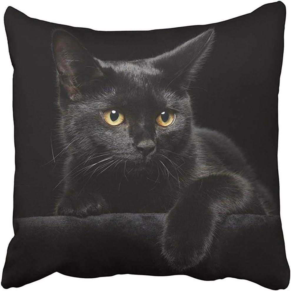 Leisure-Time Fundas de Almohada Halloween Gato Negro Ojos ...