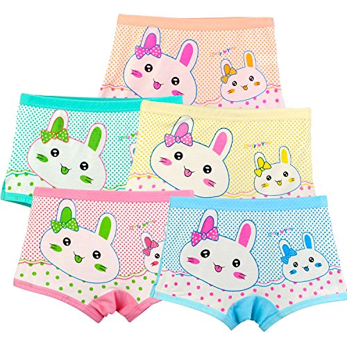 (BOOPH Girls' Panties Rabbit Underwear Bunny Boyshort Hipster Kids Briefs 2-11 Years)
