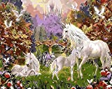 Dorara DIY Oil Painting Paint By Number Hand Paintworks 16×20 Inches Unicorn