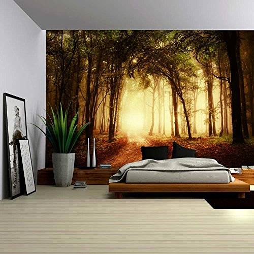 Pathway in a Forest with an Orange Glow Wall Mural