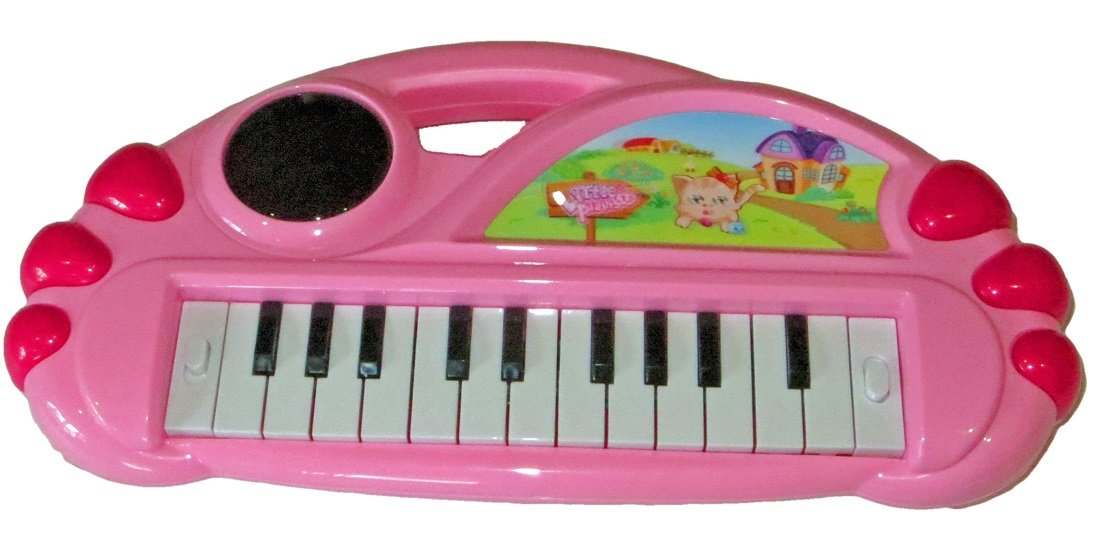 Great Gift for Children FunTech Little Pianist Magical Toy Piano Set