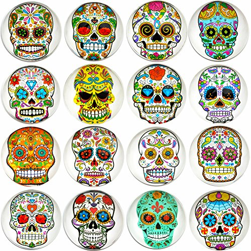 Aligle 16pcs Beautiful Glass Refrigerator Magnets Cute Fridge Stickers Funny for Office Cabinets Whiteboards Skull Decorative Photo Abstract Calendar Bulletin Board(16 Skull)