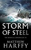 Storm of Steel (6) (The Bernicia Chronicles)