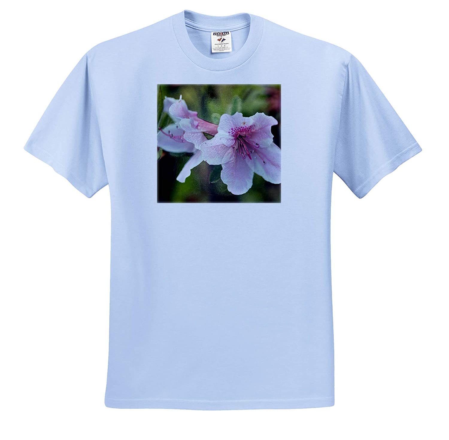 Macro Photograph of Pink Azaleas with a Plastic wrap Effect 3dRose Stamp City Flowers ts/_312240 - Adult T-Shirt XL