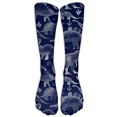 Mipu Shangmao Cool Dinosaurs Pop Sports Socks Running Socks Soccer Socks Stocking