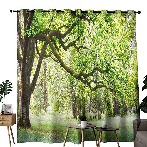 Partition Straight Panel Fabric - duommhome Curtain for Kids Forest Suitable for Bedroom Living Room Study, etc.W108 x L96