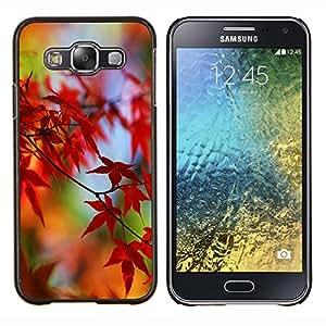 - Maple Leaf CANADA - - Cubierta del caso de impacto con el patr??n Art Designs FOR Samsung Galaxy E5 E500 Queen Pattern