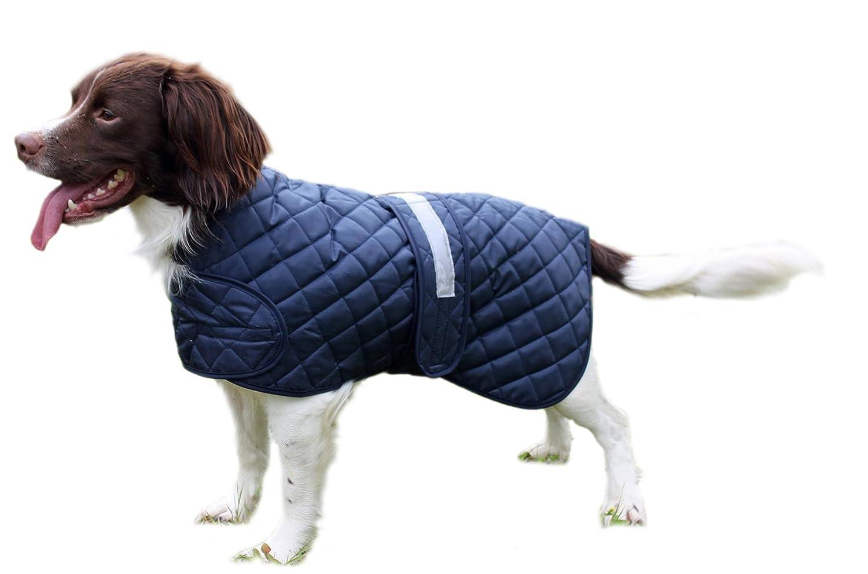 Cosipet Anorak de sécurité pour chien CO10ANXBL