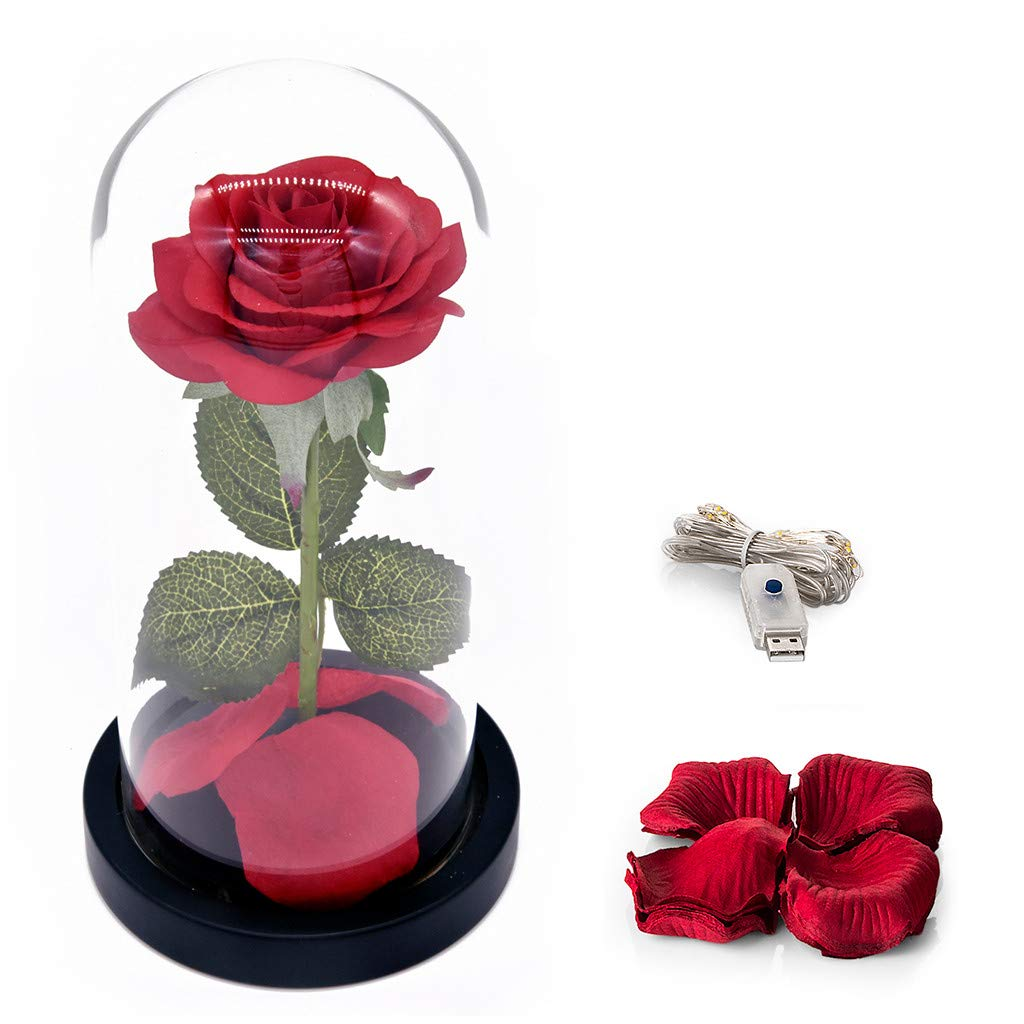Goldweather Simulation Rose Lamp Strip Romantic Rose Light Glass Cover Led Micro Landscape Wedding (A)