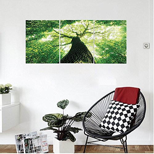 Liguo88 Custom canvas Forest Home Decor Sunlights to Woodland Wild Habitat Summer Rays Dreamy Foliage Park Landscape Wall Hanging for Bedroom Living Room Green (Ross Ray Park)