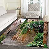 Landscape Print Area rug Summer Garden Flowers Marigold Stones Antique Ancient House in Spain Art Print Perfect for any Room, Floor Carpet 4'x6' Multicolor