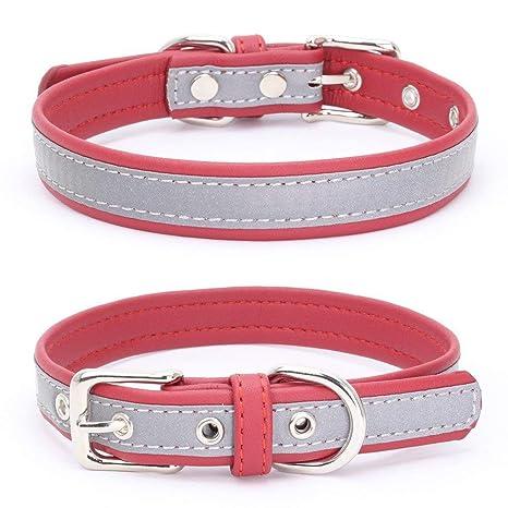 Tomister - Collar para Cachorros y Perros, Ajustable, de ...