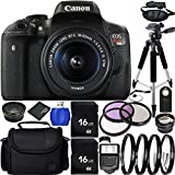 Canon EOS Rebel T6i 24.2MP DSLR Camera Bundle with 18-55mm f/3.5-5.6 IS STM Lens, Case and Accessory Kit (19 Items)