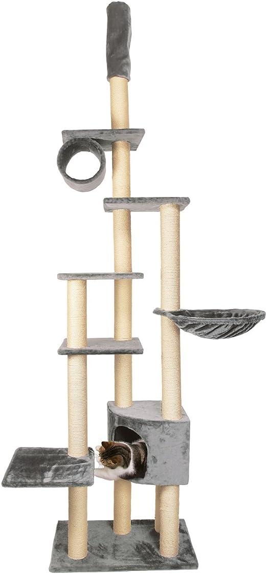 TRIXIE Poste Rascador Madrid, Suelo-Techo, 245-270 cm, Plata, Gato: Amazon.es: Productos para mascotas