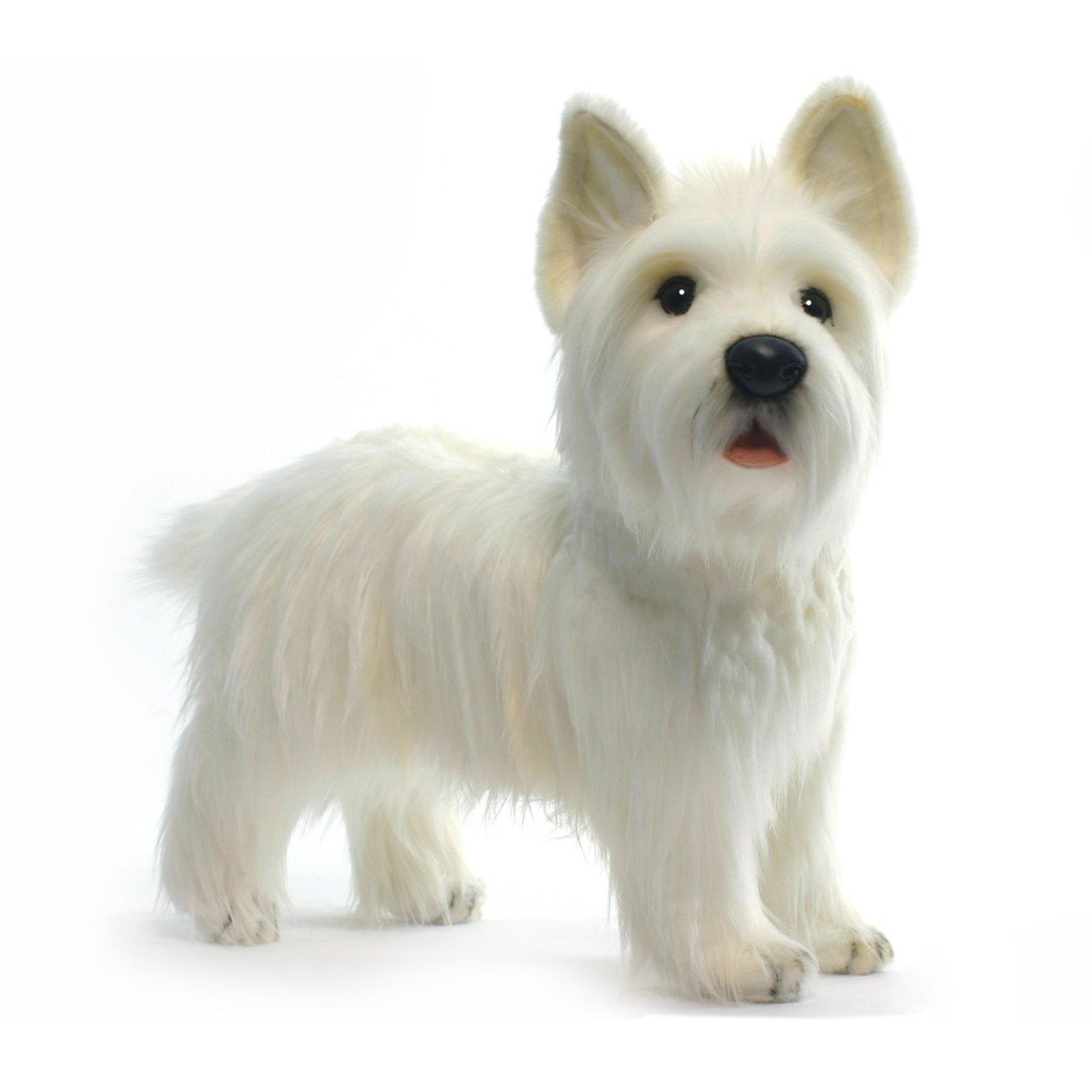 HANSA West Highland Dog Collectible Plush, White, 20'' by HANSA