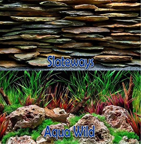 Brown Sugar Seaview Slateways/Aqua Wild 12'' Height Aquarium Double-sided Background (12'' x 36'') by Brown Sugar