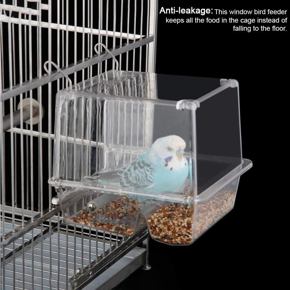 Ritapreaty Comedero para pájaros, alimentador automático de Loros ...