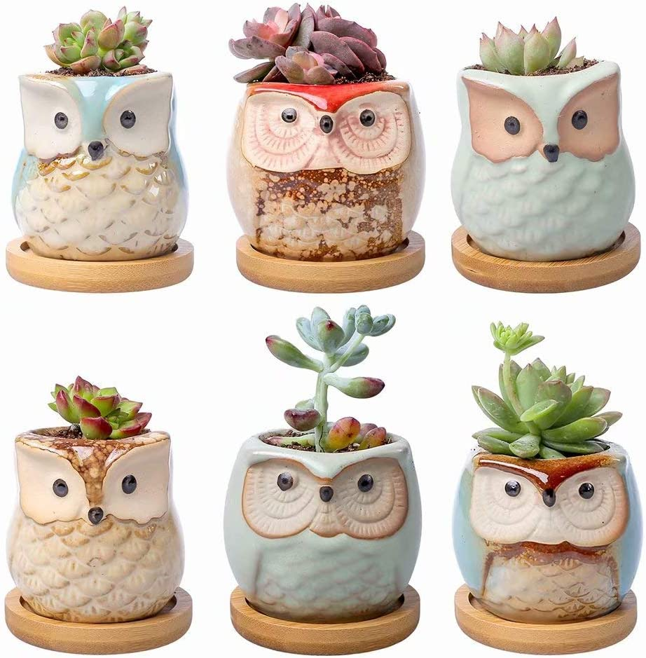 Owl Planter Pots for Succulents,Ceramic Cactus Flower Pots with Bamboo Tray Pack of 6 Home Office Decor