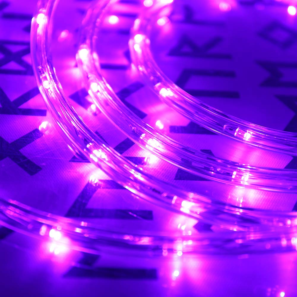 Dingfu Upgraded 100ft Low Voltage 2 Wire Waterproof Led Outdoor Rope How To Lighting Part Light Fit For Background