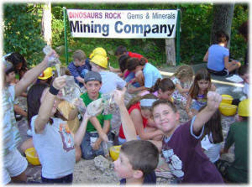 Fossil Mineral Gemstone Excavation Dino Dig Kit - 200+ Real Specimens
