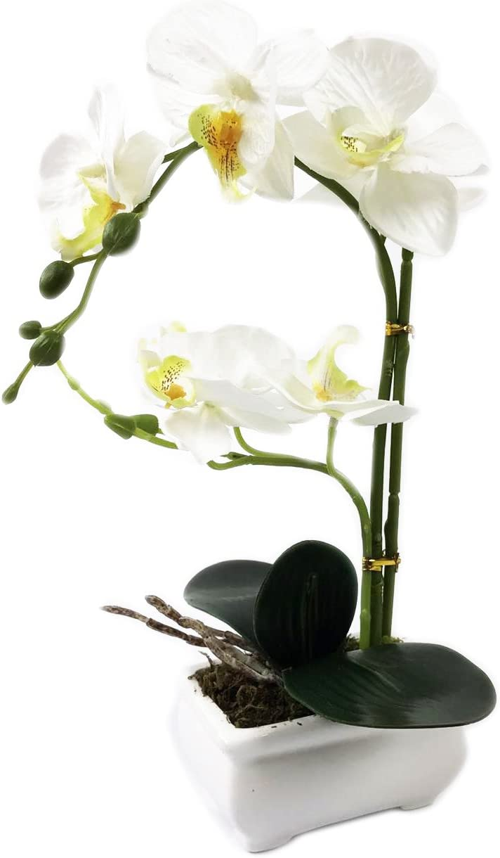 White Artificial Orchid Plant potted in a Ceramic Vase