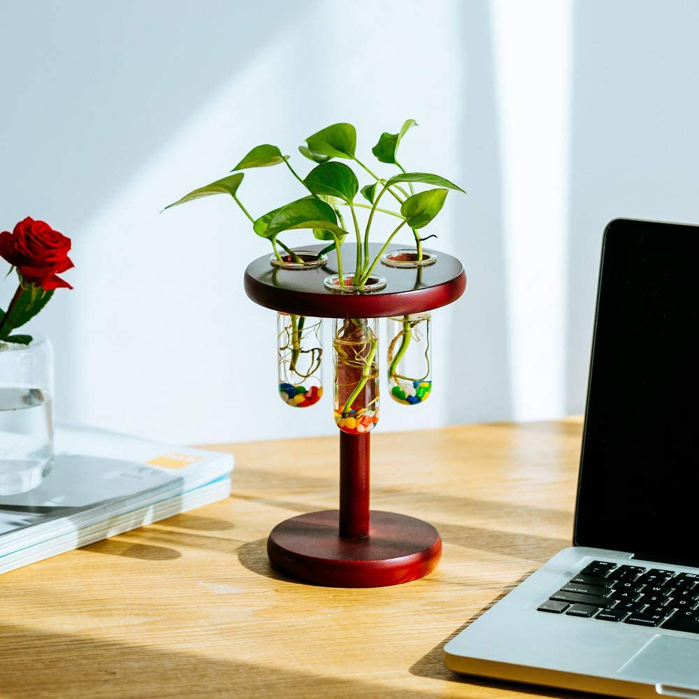 Crystal Glass 3 Test Tube Planter Vase with Wooden Stand Round Glass Terrarium Tabletop Planter Flower Pots Black for Hydroponic Plants Propagation Station Office Home Decoration
