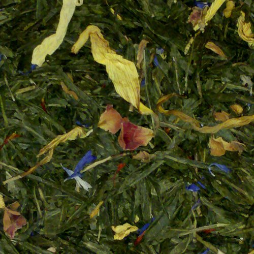 Apricot Mango Medley Certified Green Loose Leaf Herbal Infusions Teas - 5 Pounds by Buffalo Buck's Coffee