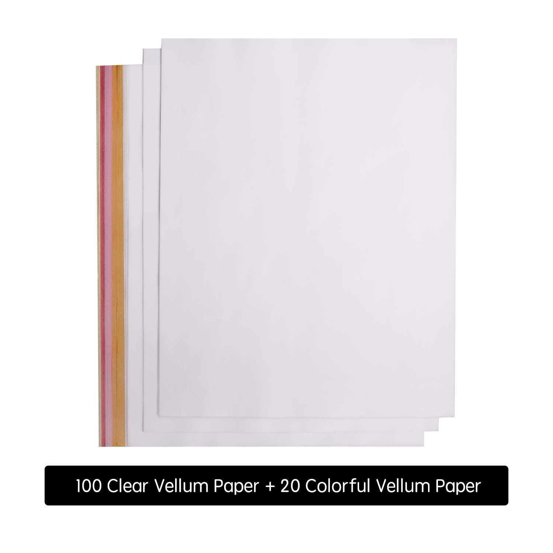 Printable Vellum Paper 8.5 x 11 Vellum Sheets Trace /& Sketch Paper Vellum Paper 100 Sheets Transparent Vellum Paper /& 20 Colored Vellum Paper Translucent Vellum Paper 120 Pack Bulk Vellum Papers