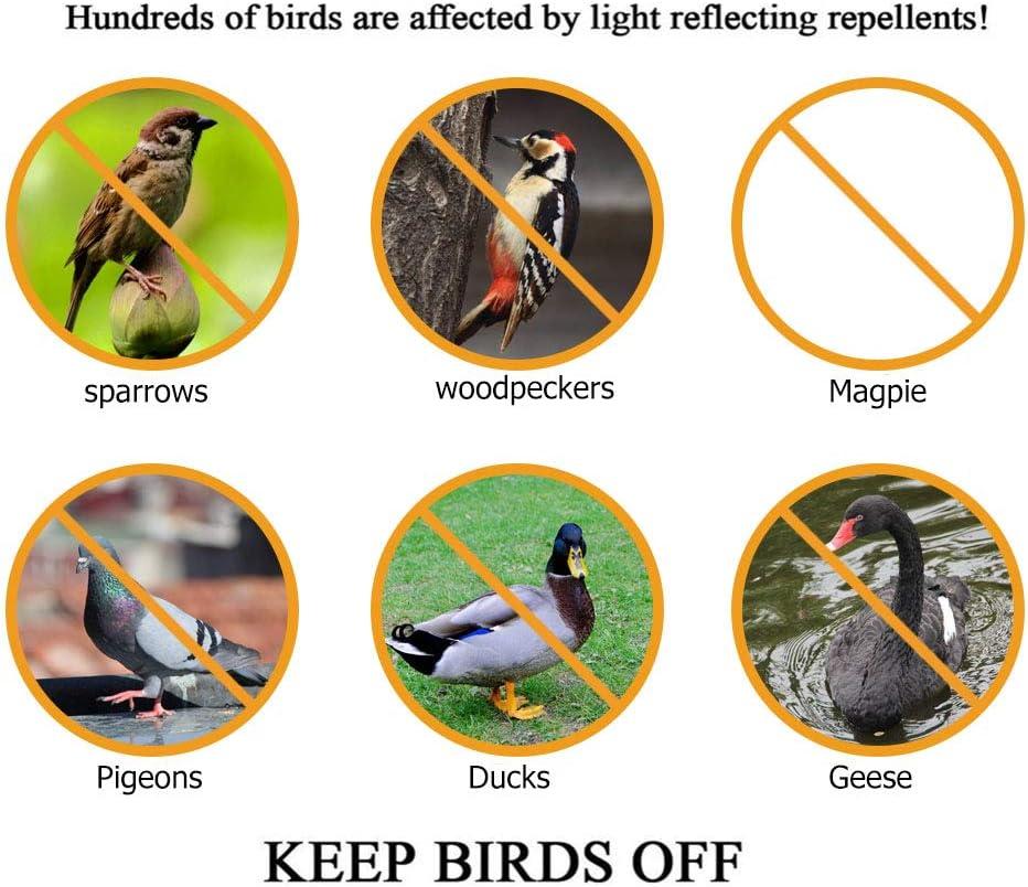 Faviye Bande Anti-Oiseaux Holographique Brillant Bande r/éfl/échissante R/épulsif Oiseaux pour Eloigner Pigeons Moineaux Corbeaux