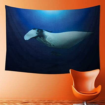 Amazon.com: also easy Tapestry Wall Tapestry Manta Ray Wall ...