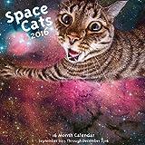 Space Cats! 2016: 16-Month Calendar September 2015 through December 2016
